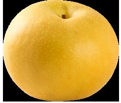 福岡県産の梨