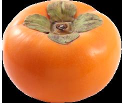 うきは産の柿